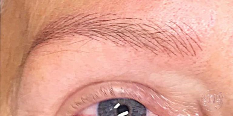 sourcils-poils-a-poils-maquillage-permanent-sabinevalenti